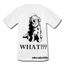 Lindo-Terranova---Perro---Perros-Camisetas.png